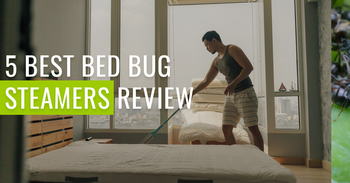 best steamer to kill bed bugs