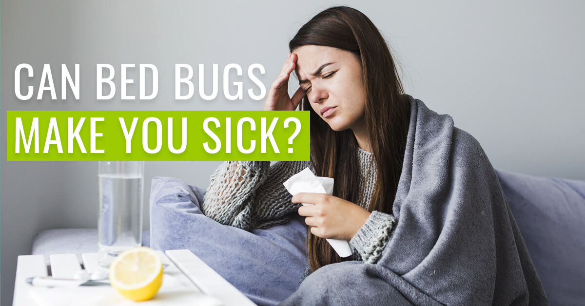Can bed bugs make you sick?